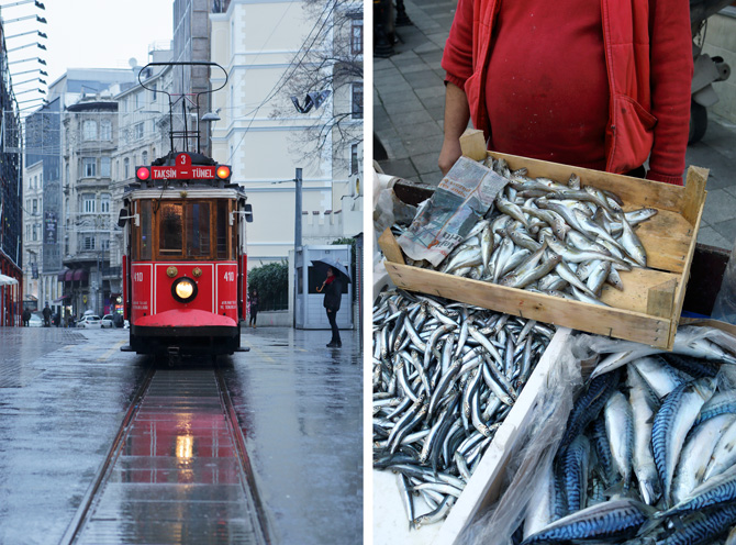 henrik-knudsen-canon-blog-tram-fish-01