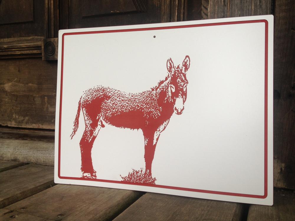 burro2.jpg