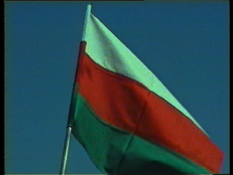 india-pal-flag.jpg