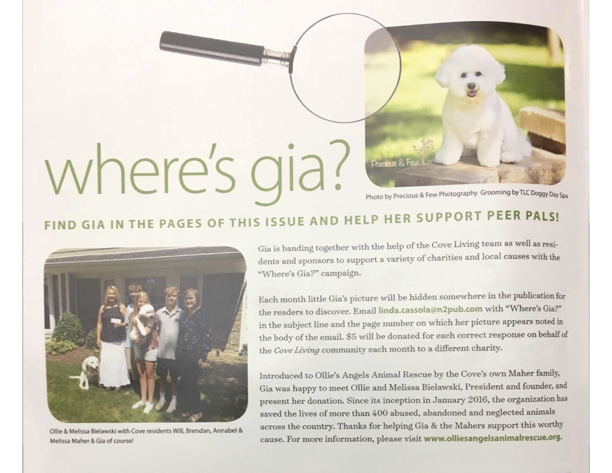 Thank you to Cove Living Magazine for featuring Ollie's Angels, as well as for their generous donation to the rescue!
