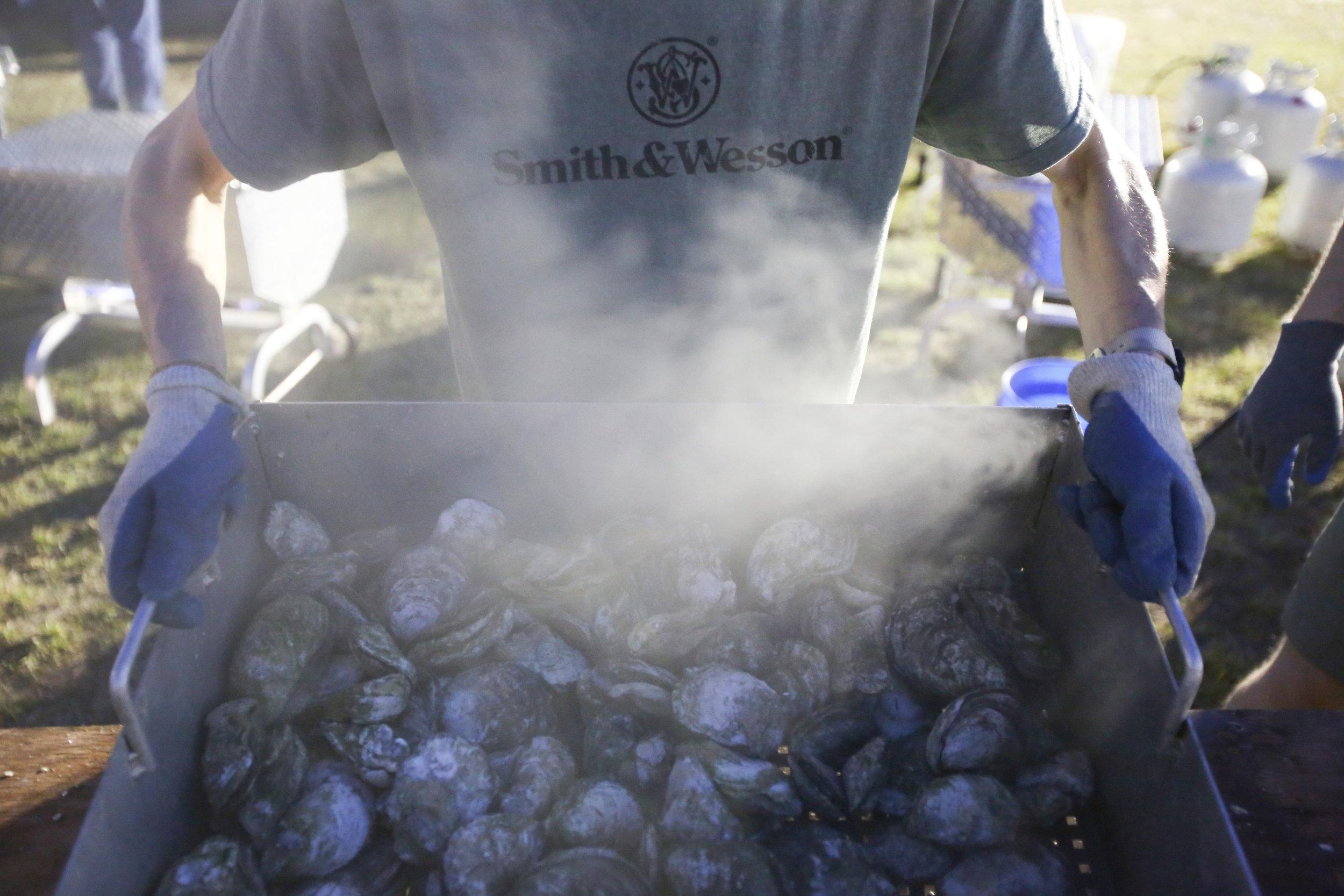 oysters in steamer.JPG