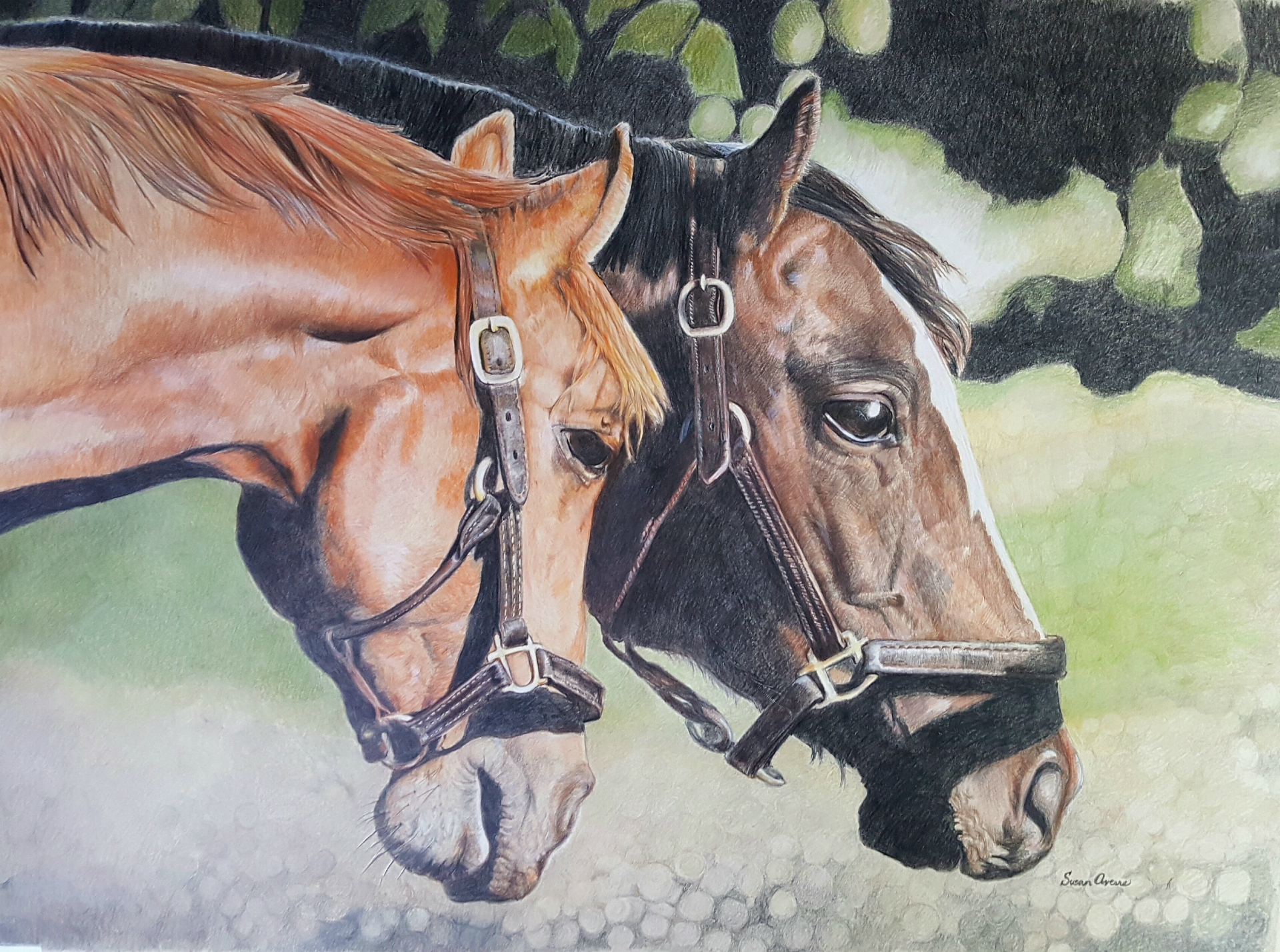 """Just Us Two"" Colored Pencil on Stonehenge, 22 x 30   Framed $975  Available"