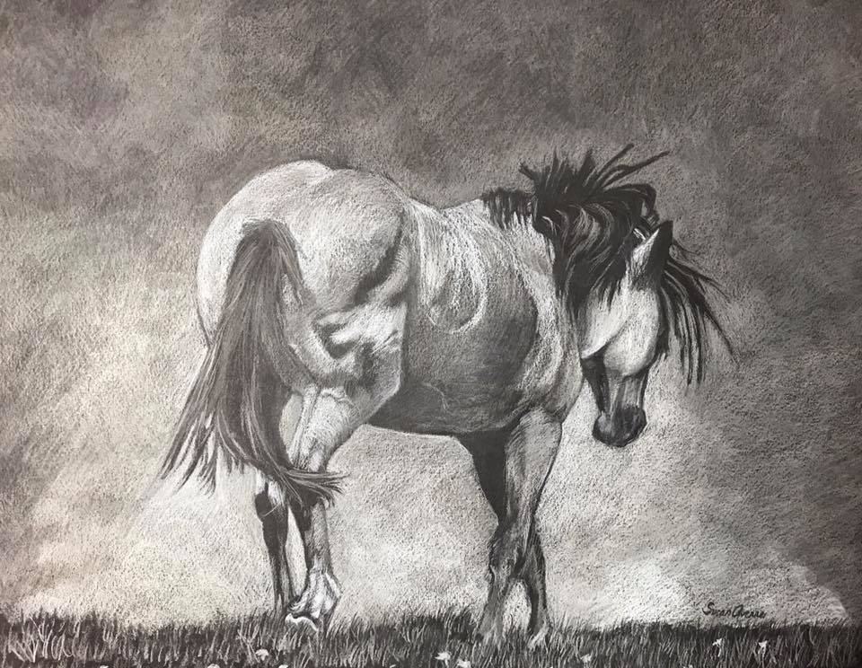 """Going Home"" Pastels on black Stonehenge 16x20  Matted, Framed.   $275 Available  Silver, stallion of a wild horse herd at Theodore Roosevelt National Park, headed back to his mares at the end of a day. From the last known photo taken of Silver,"