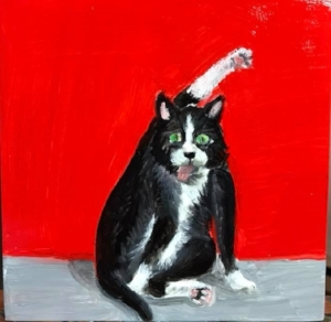 "Cat Wash Interruptus   Oils on Canvas  6""x6""  $55   Available"