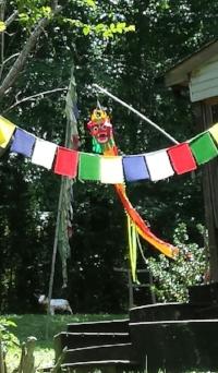 Taiji flags