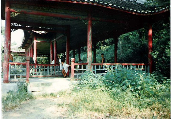 Snake Mountain Pavilion