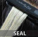 th_thair-seal.jpg