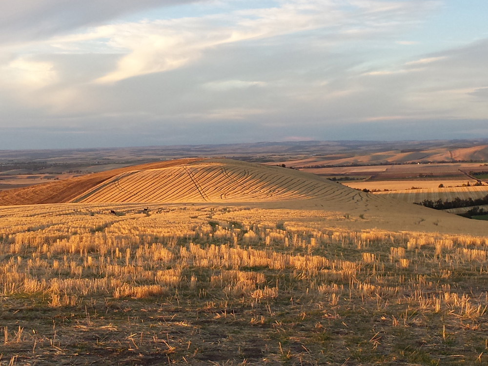 View on top of Walla Walla Valley