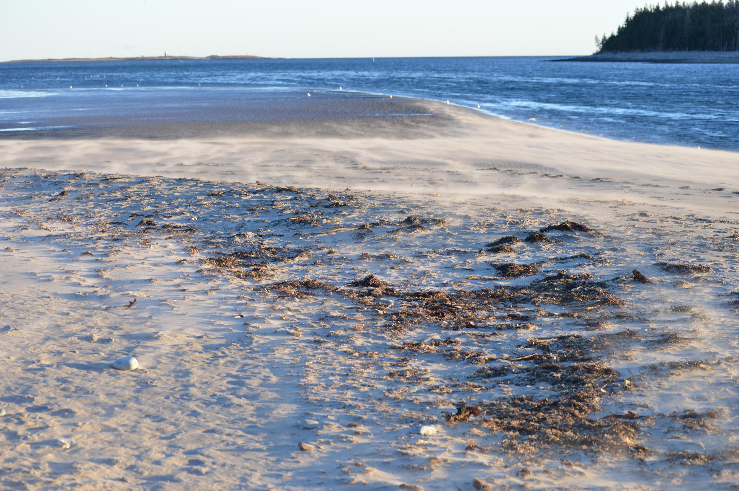 Sand Storm at McCormacks Beach Provincial Park