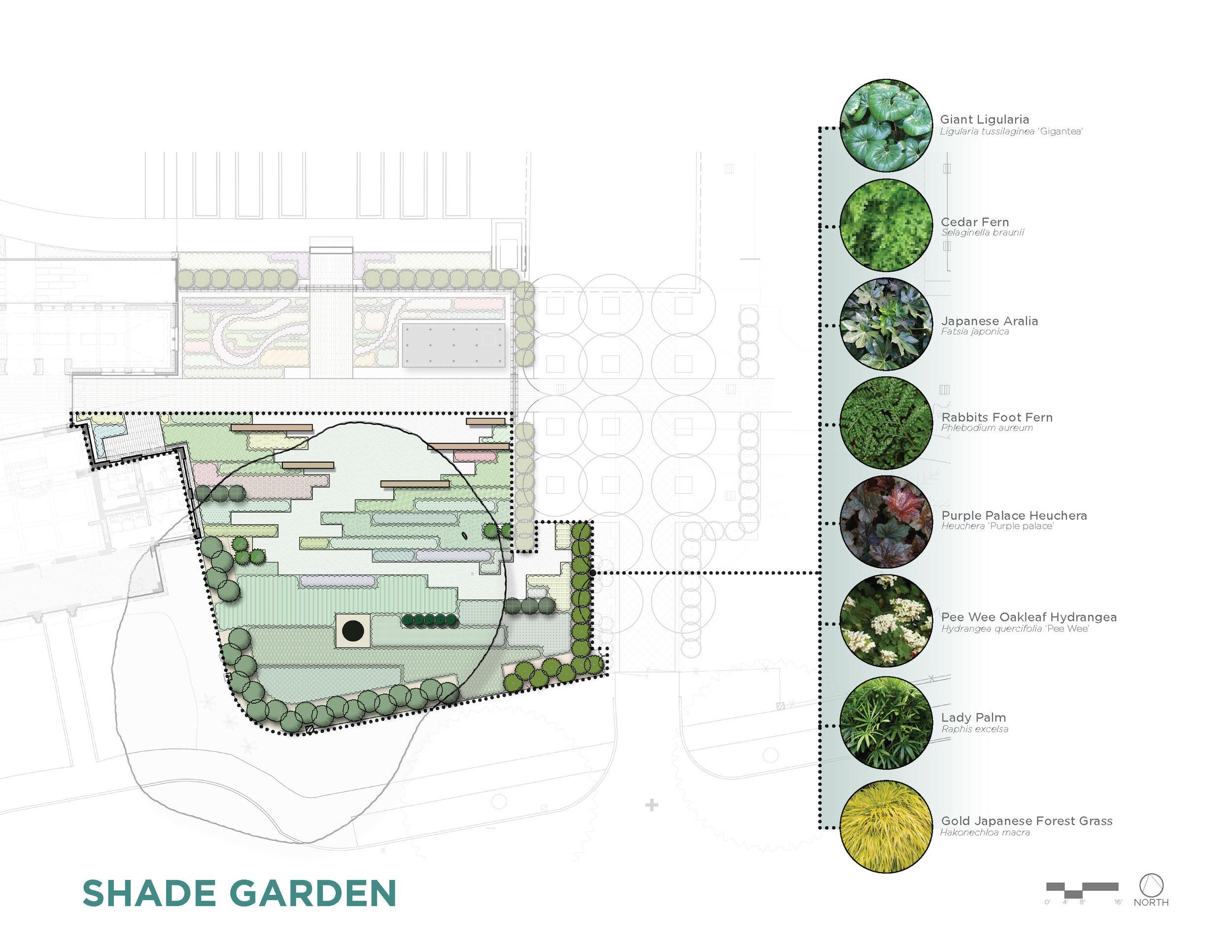 CARBO Landscape - New Orleans Botanical Garden_Page_04.jpg