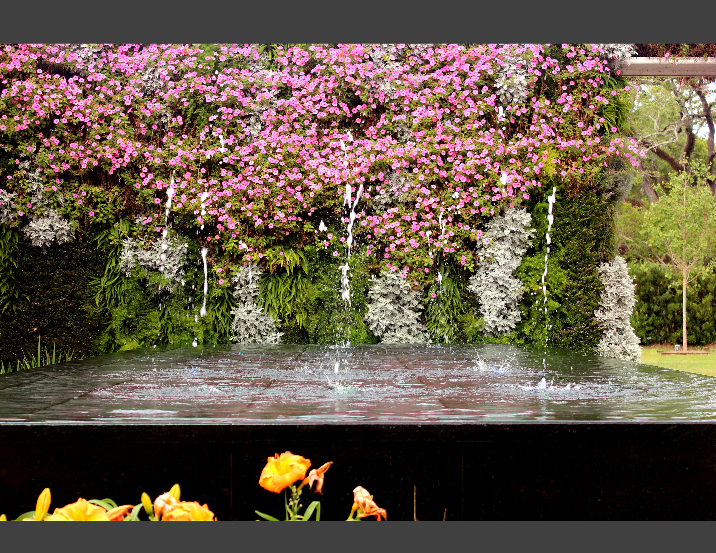 CARBO Landscape - New Orleans Botanical Garden_Page_12.jpg