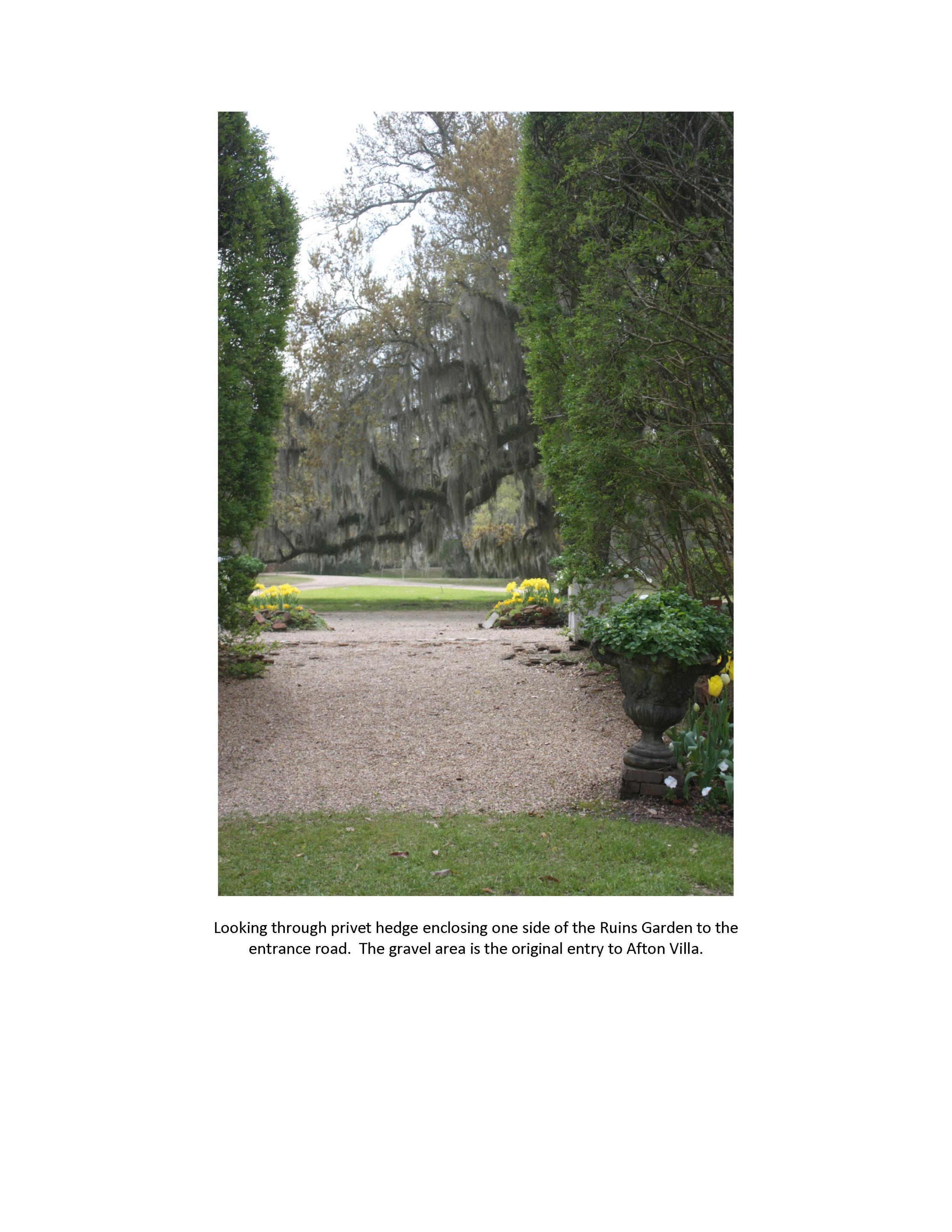 Lake Douglas - Afton Villa_Page_06.jpg