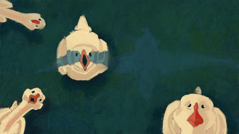 geesefright.jpg