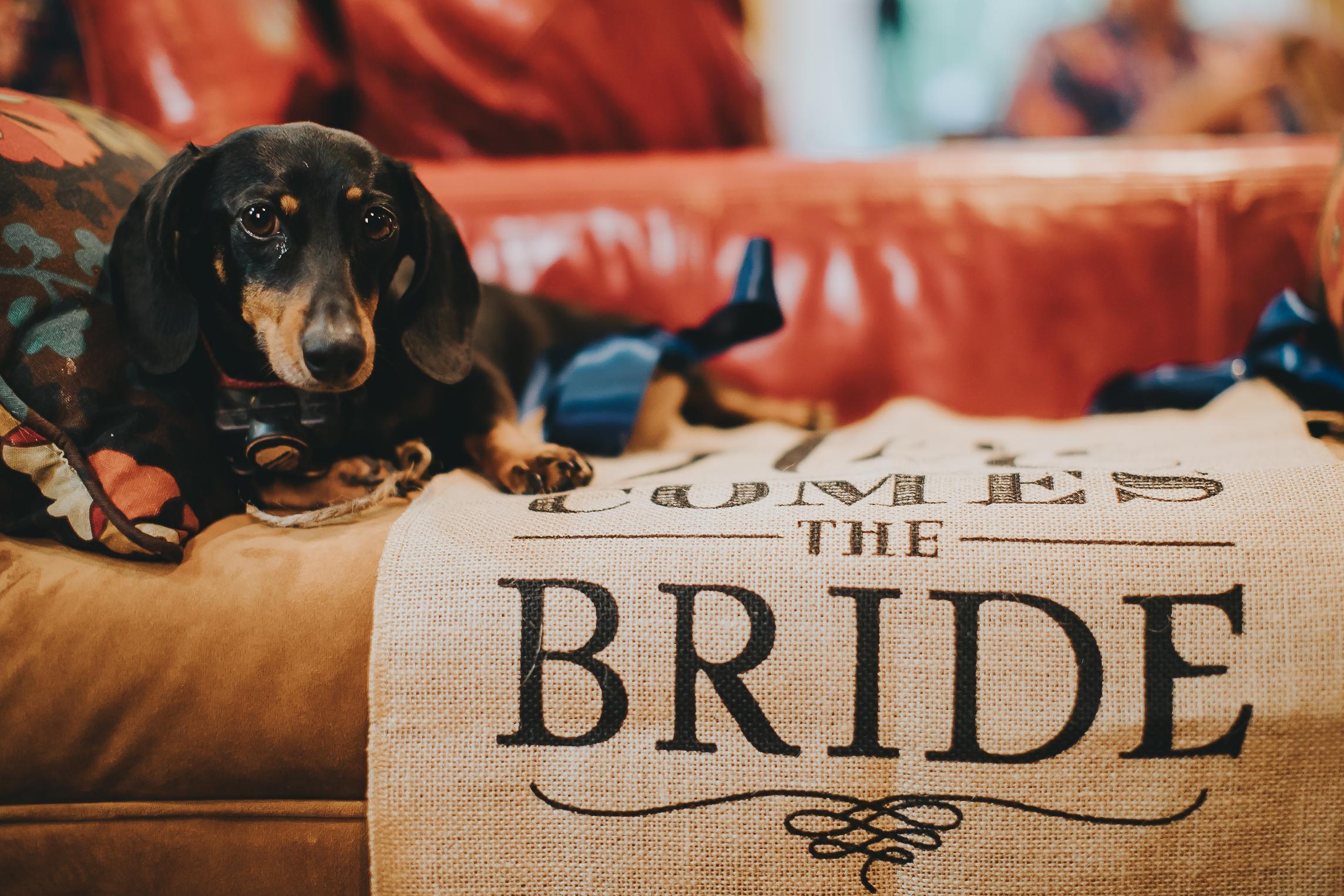 The Burke wedding-10.jpg