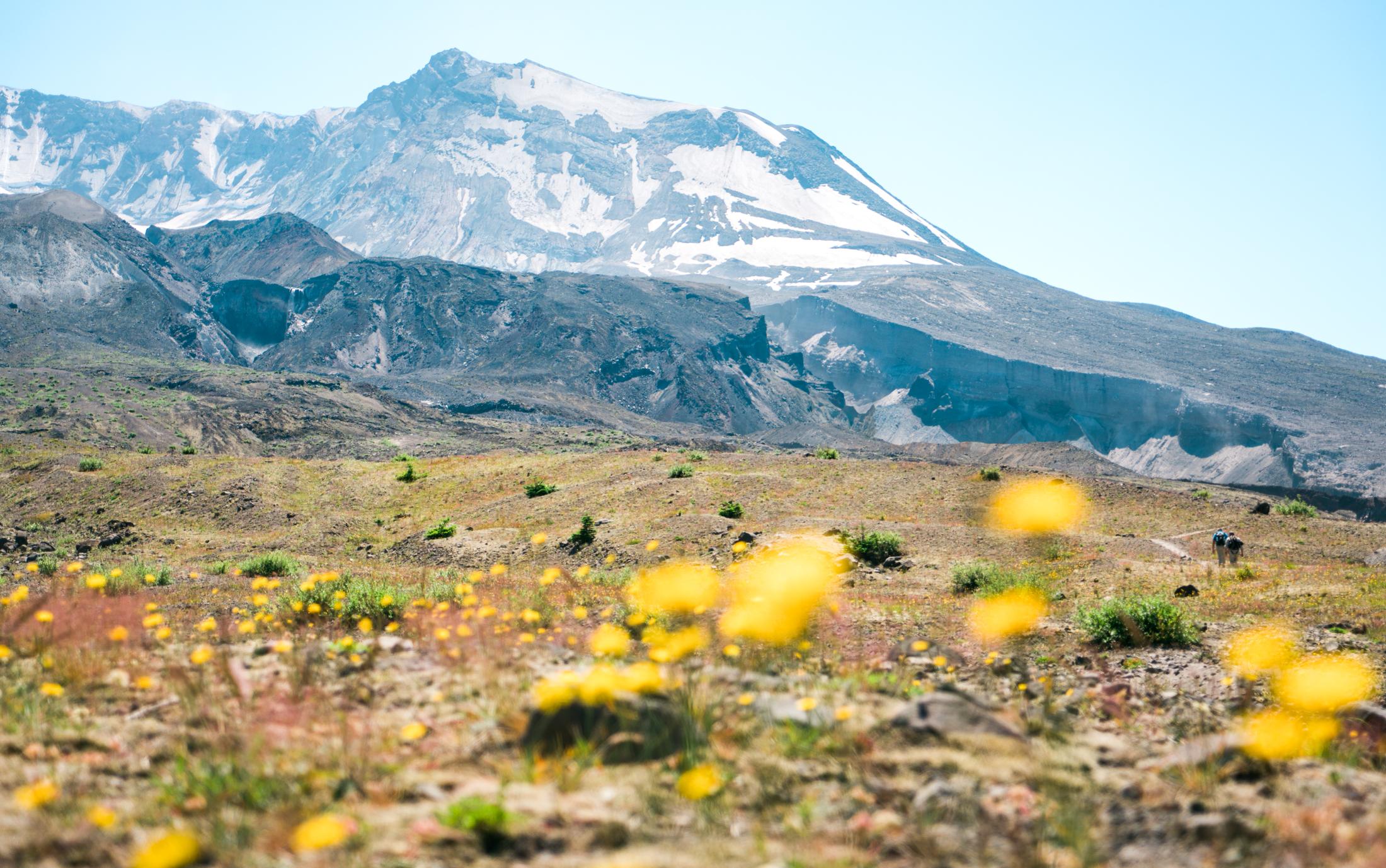 Mt St Helens Hike-09043.jpg