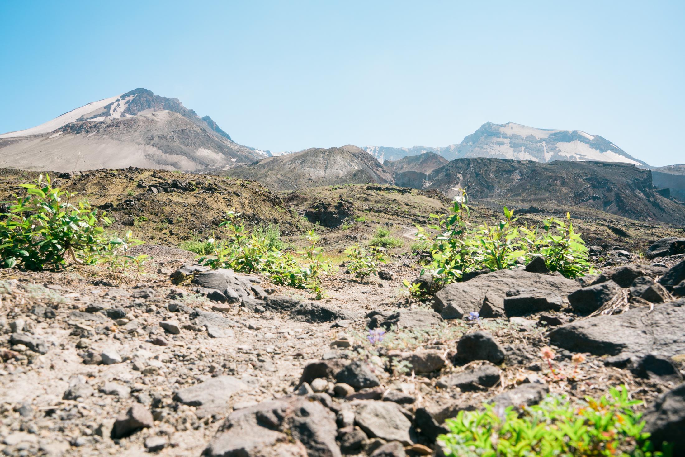 Mt St Helens Hike-09054.jpg