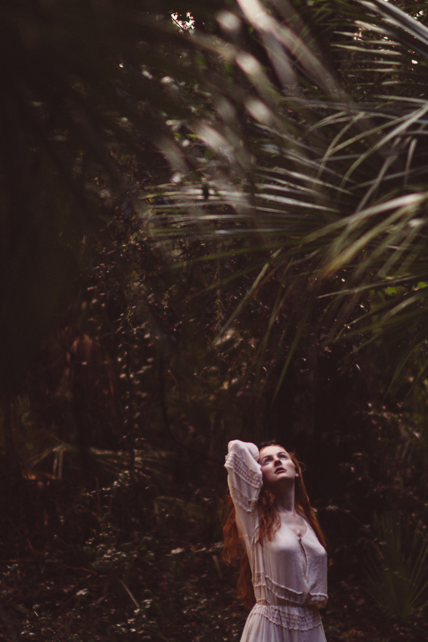 Copyright © Kylee Parks 2016
