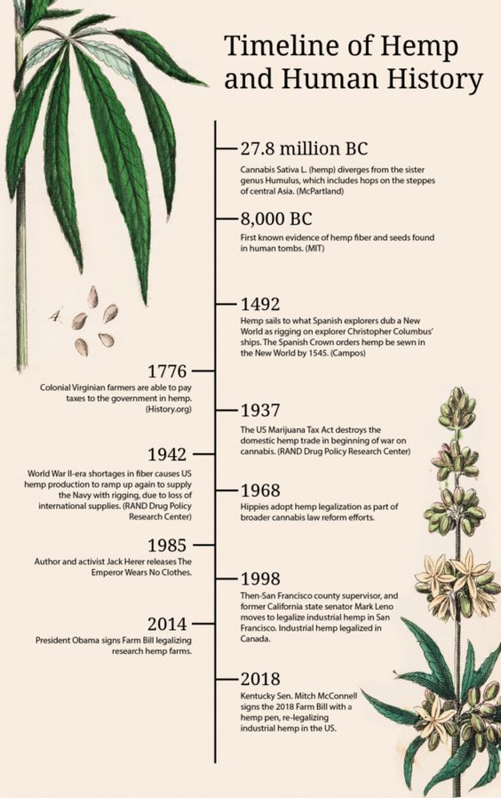 History of hemp.jpg