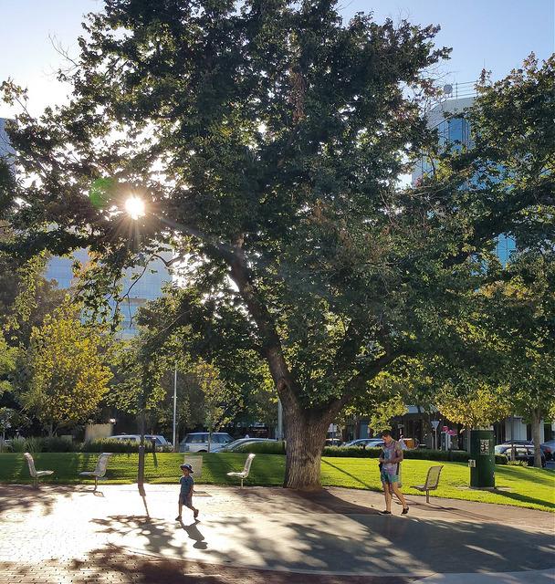 The Hindmarsh Square photo album