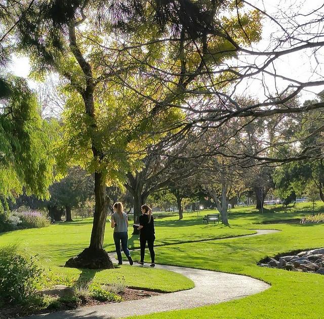 The Veale Park / Walyu Yarta photo album