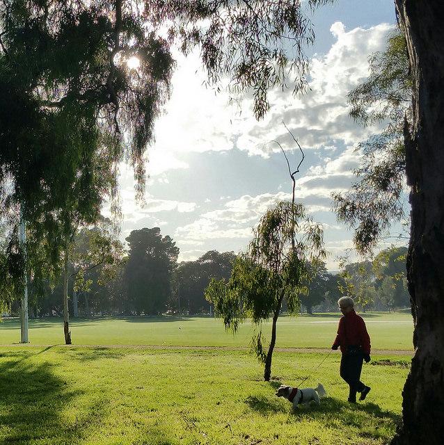 The Bullrush Park / Warnpangga (Park 10) photo album