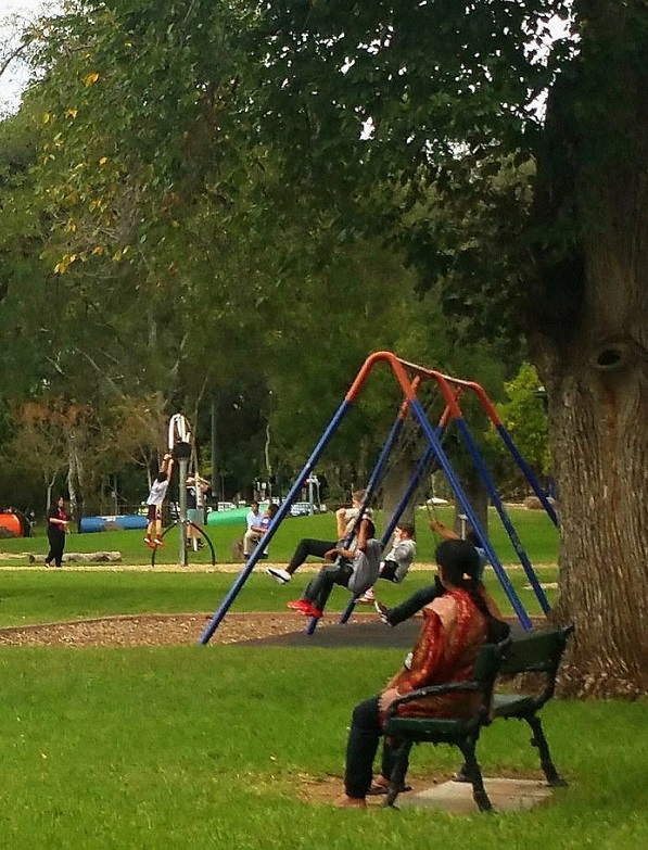 The Blue Gum Park / Kurangga (Park 20) photo album