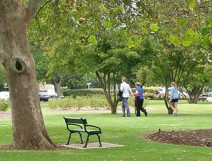 Brougham Gardens /Tantutitingga (Park 29) photo album