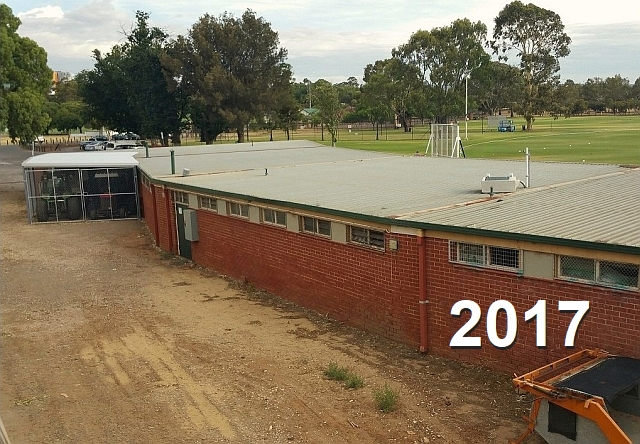 cricket shed BEFORE.jpg