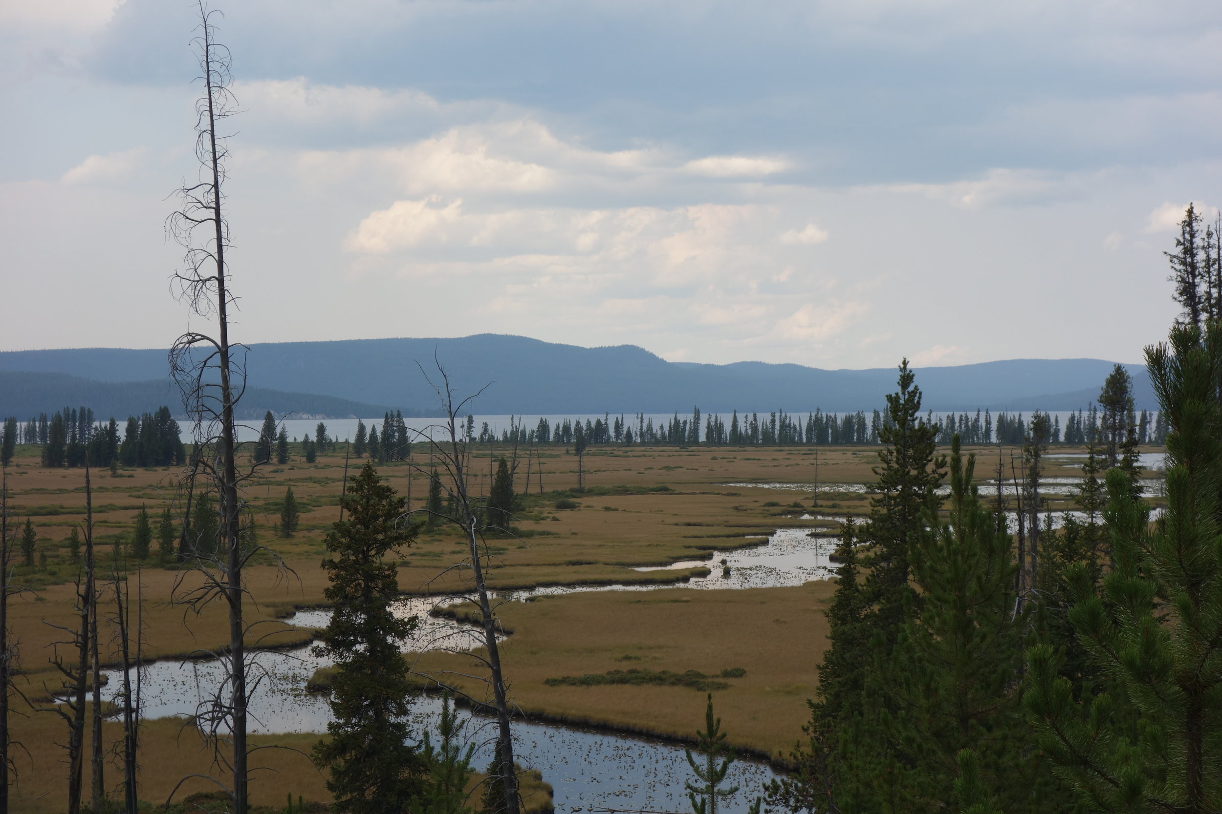 Shoshone Creek and Lake - the second largest lake in Yellowstone. Check out facebook.com/hikethedivide for video footage of the marshy section