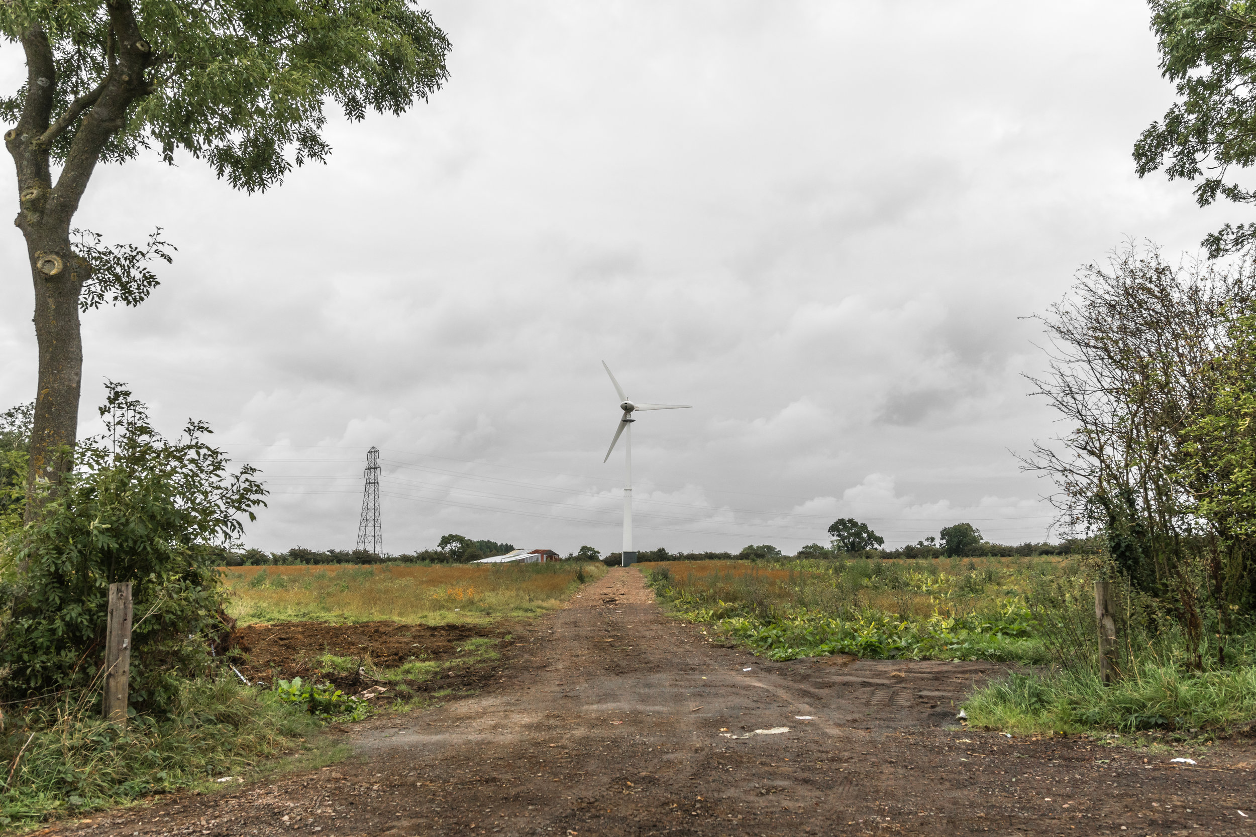 Wind Farm Leicestershire