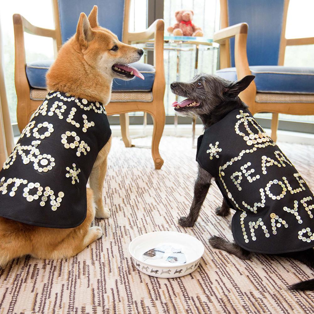 Hiro + Wolf Dog Bowls