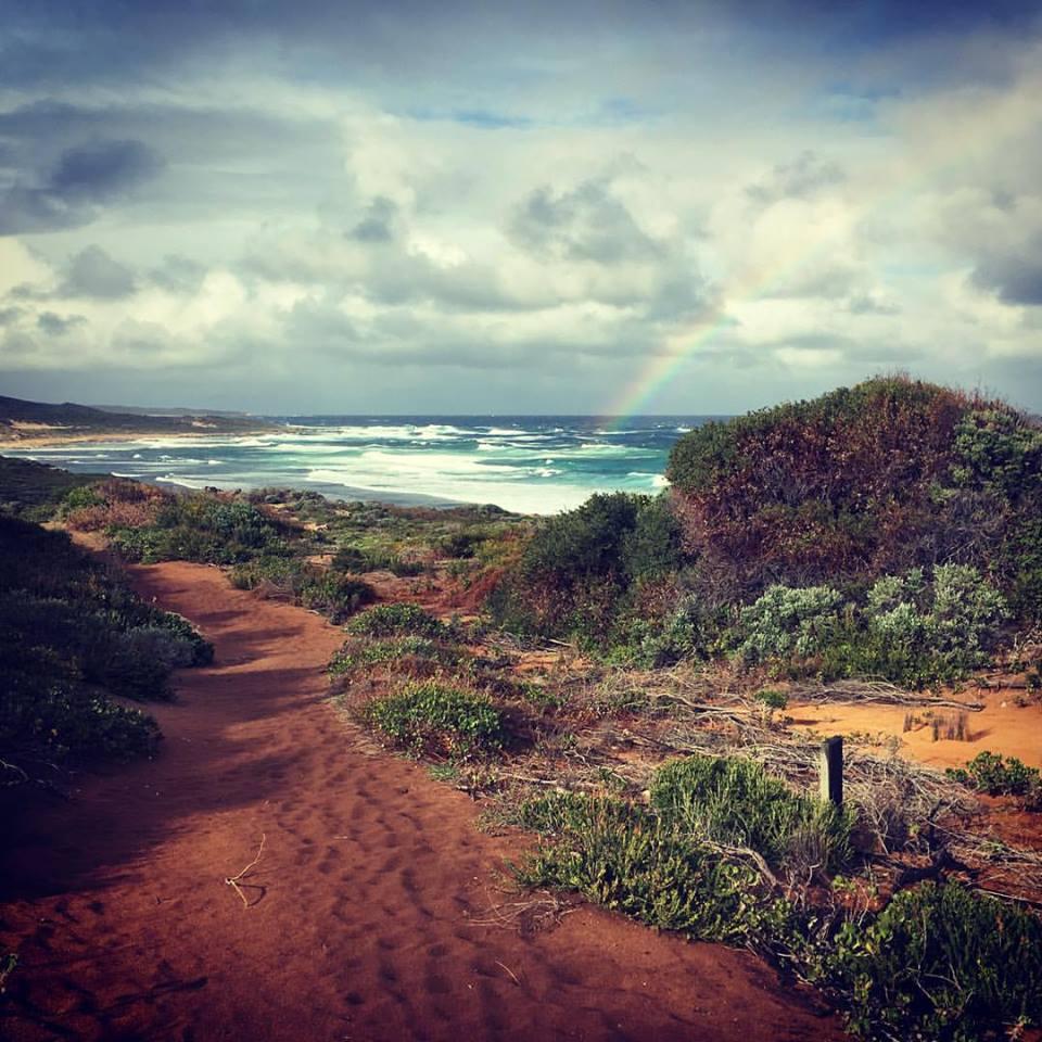 Cape to Cape Walking Tours