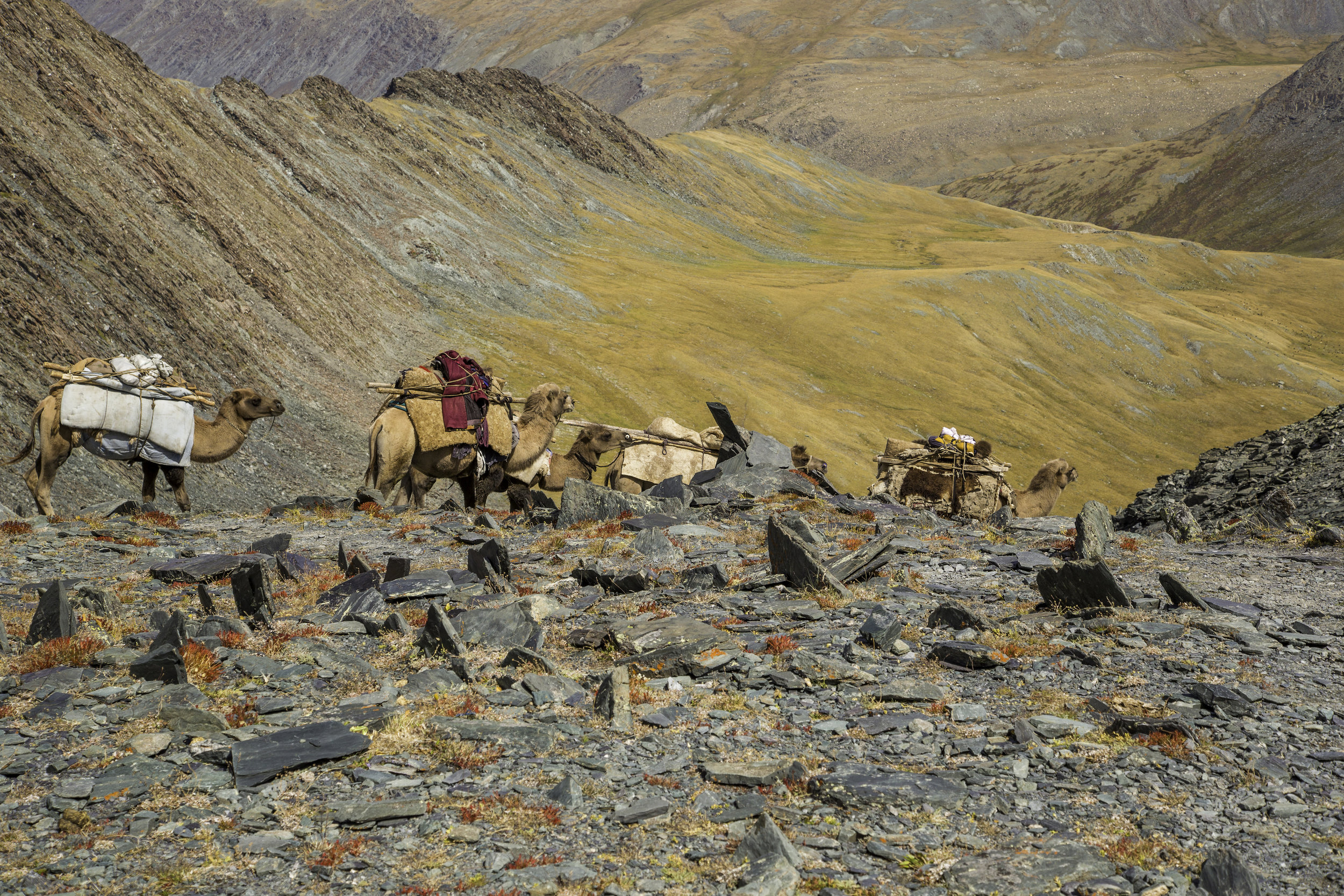 Tavan Bogd National Park - Edgewalkers Mongolia Walking Tour