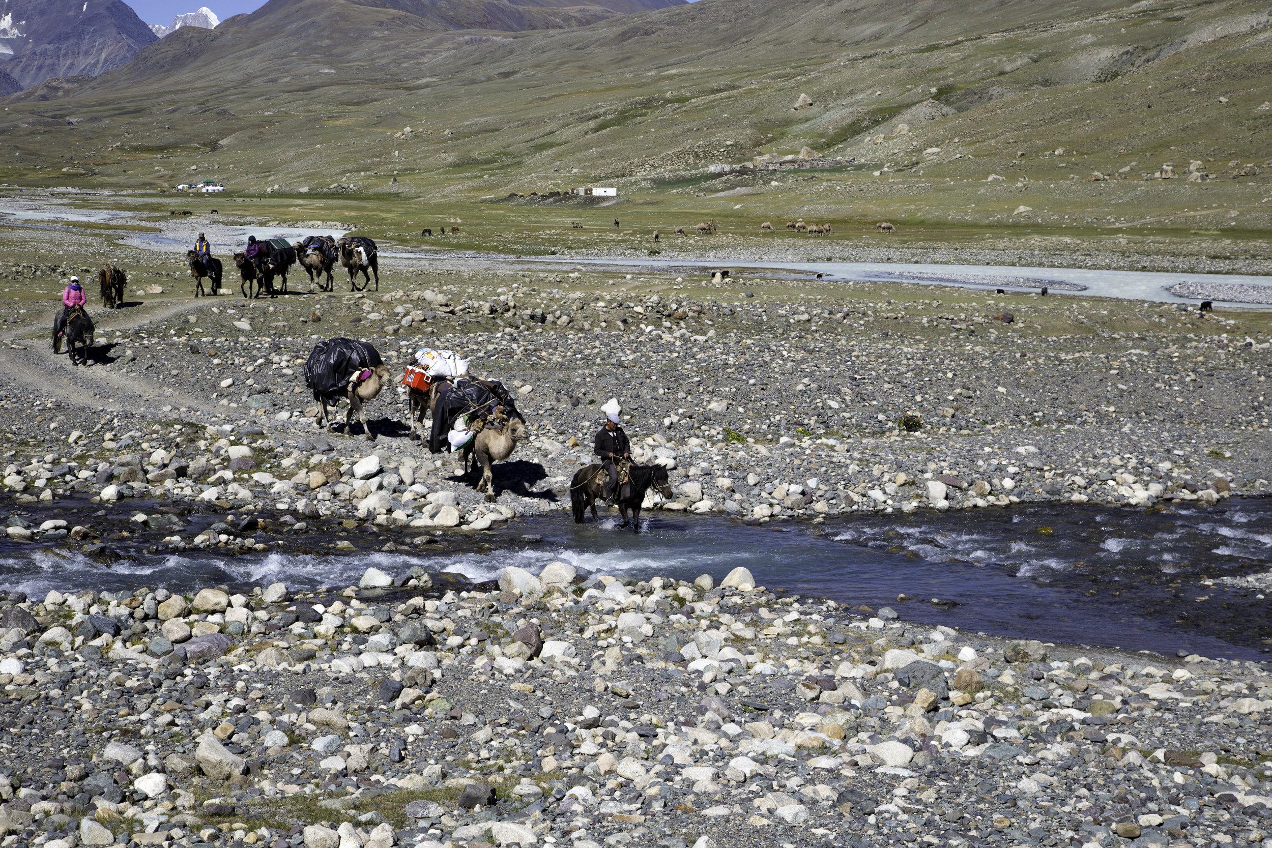 Mongolia Tavan Bogd National Park camels crossing river.jpg