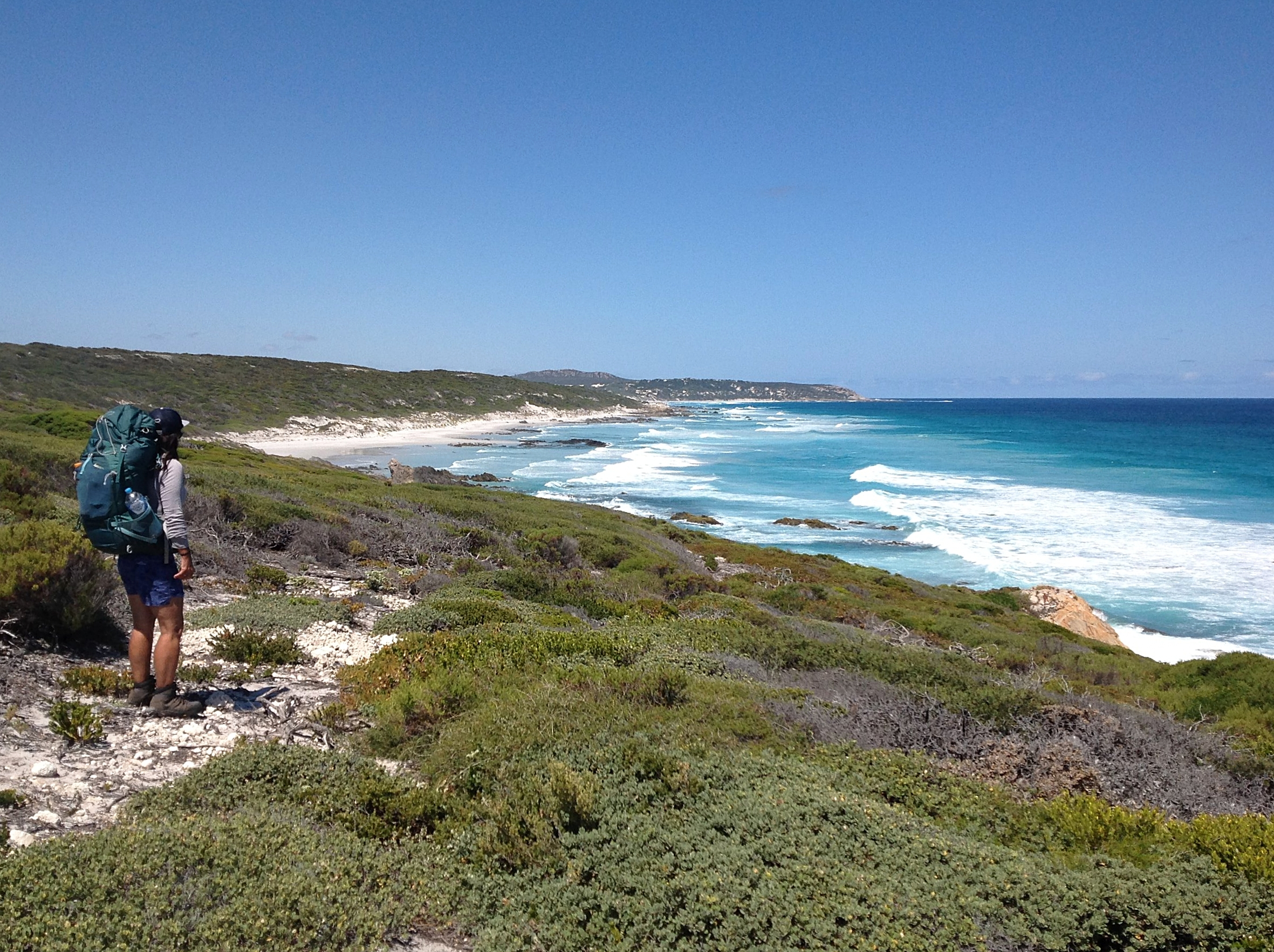 On the Hakea Trail - Fitzgerald River National Park