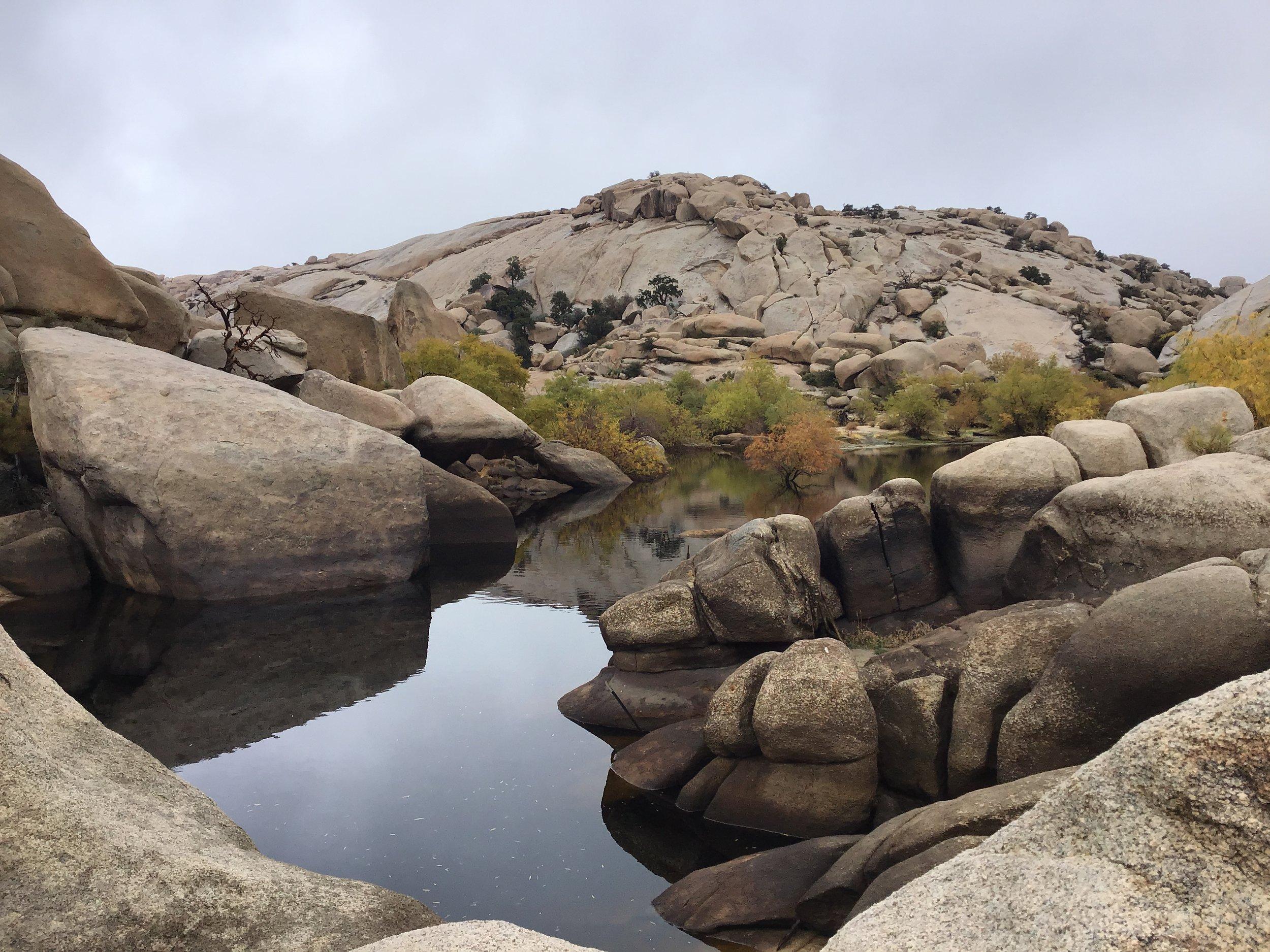 Barker Dam - Joshua Tree National Park