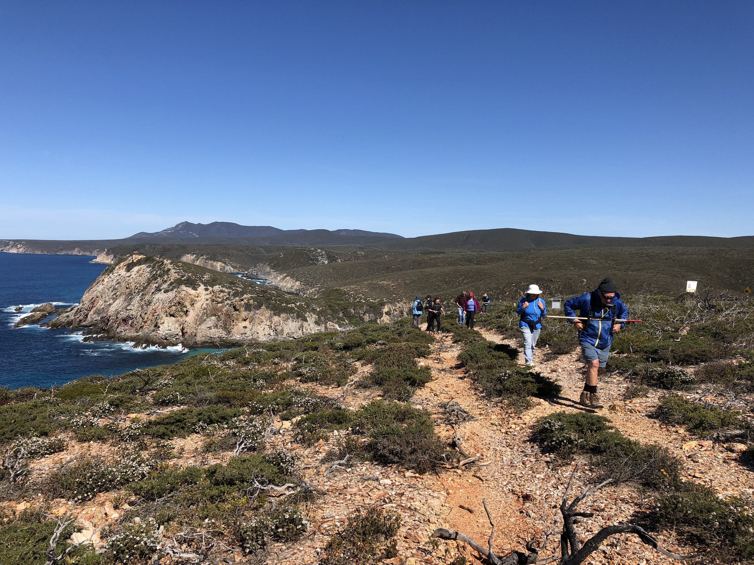 5-DAY WALKING WITH WILDFLOWERS - FITZGERALD BIOSPHERE