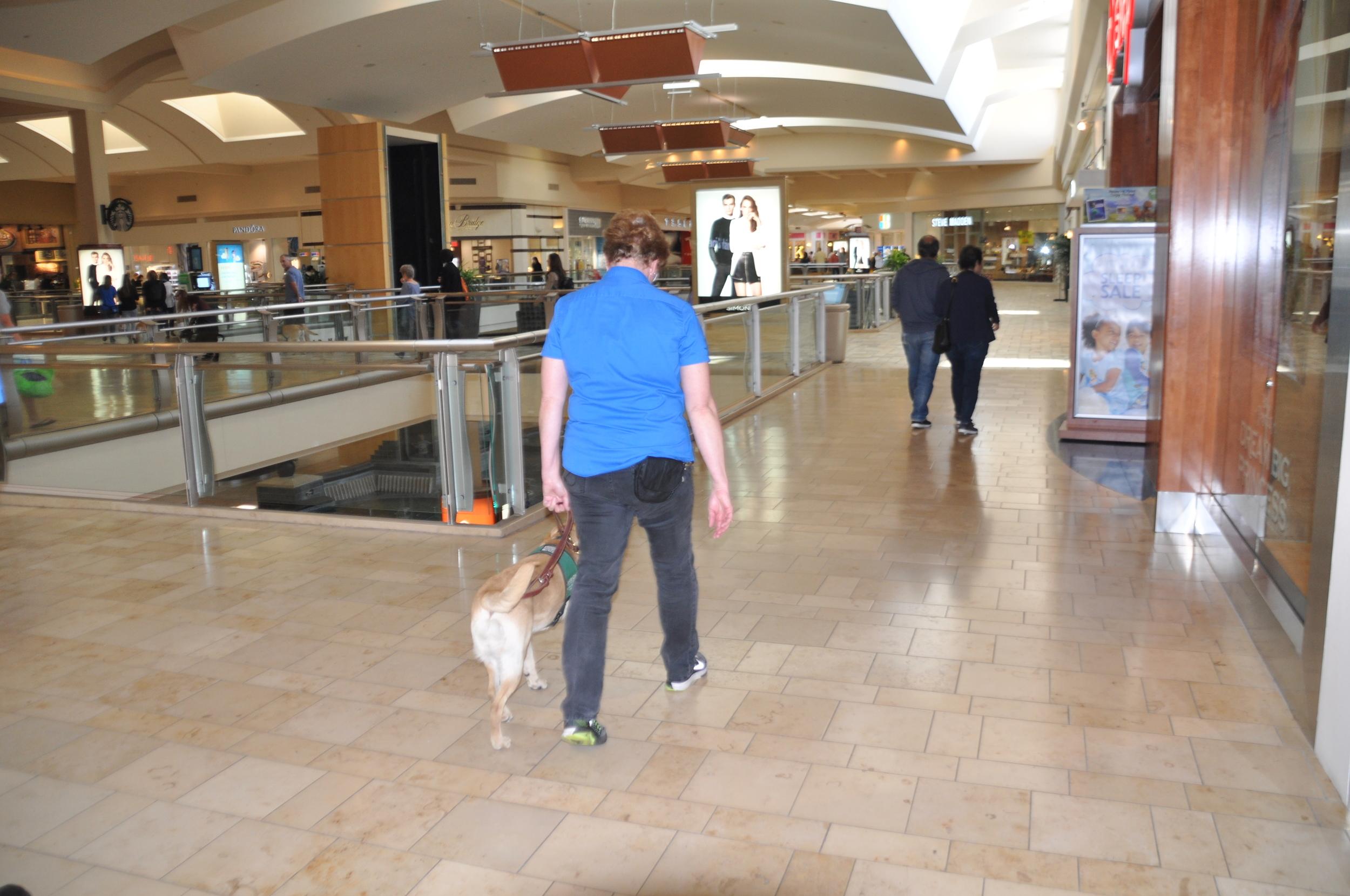 Glitter Mall outing Feb.JPG