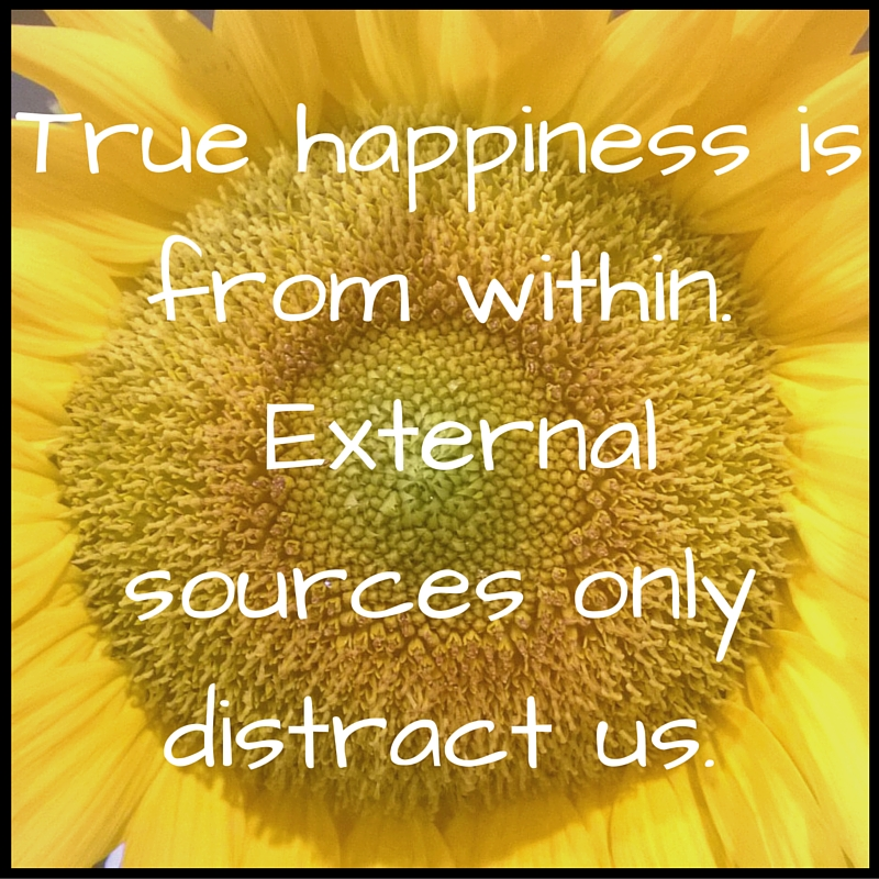 True happiness is from within. External sources only distract us..jpg