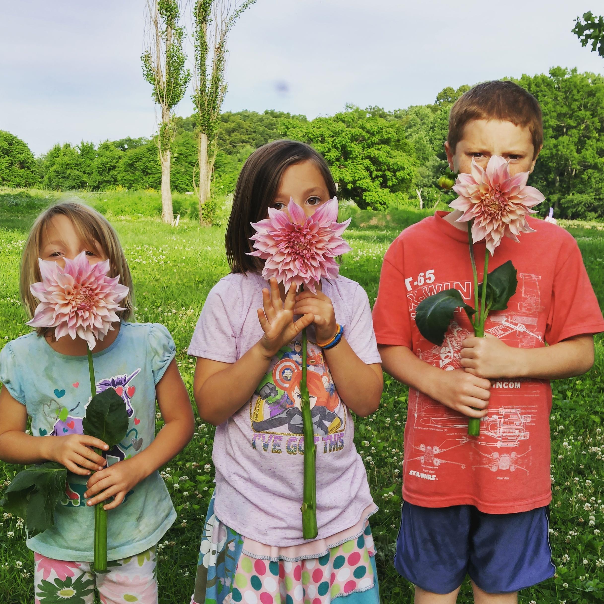 Kids on a flower farm holding organic cafe au lait dahlias