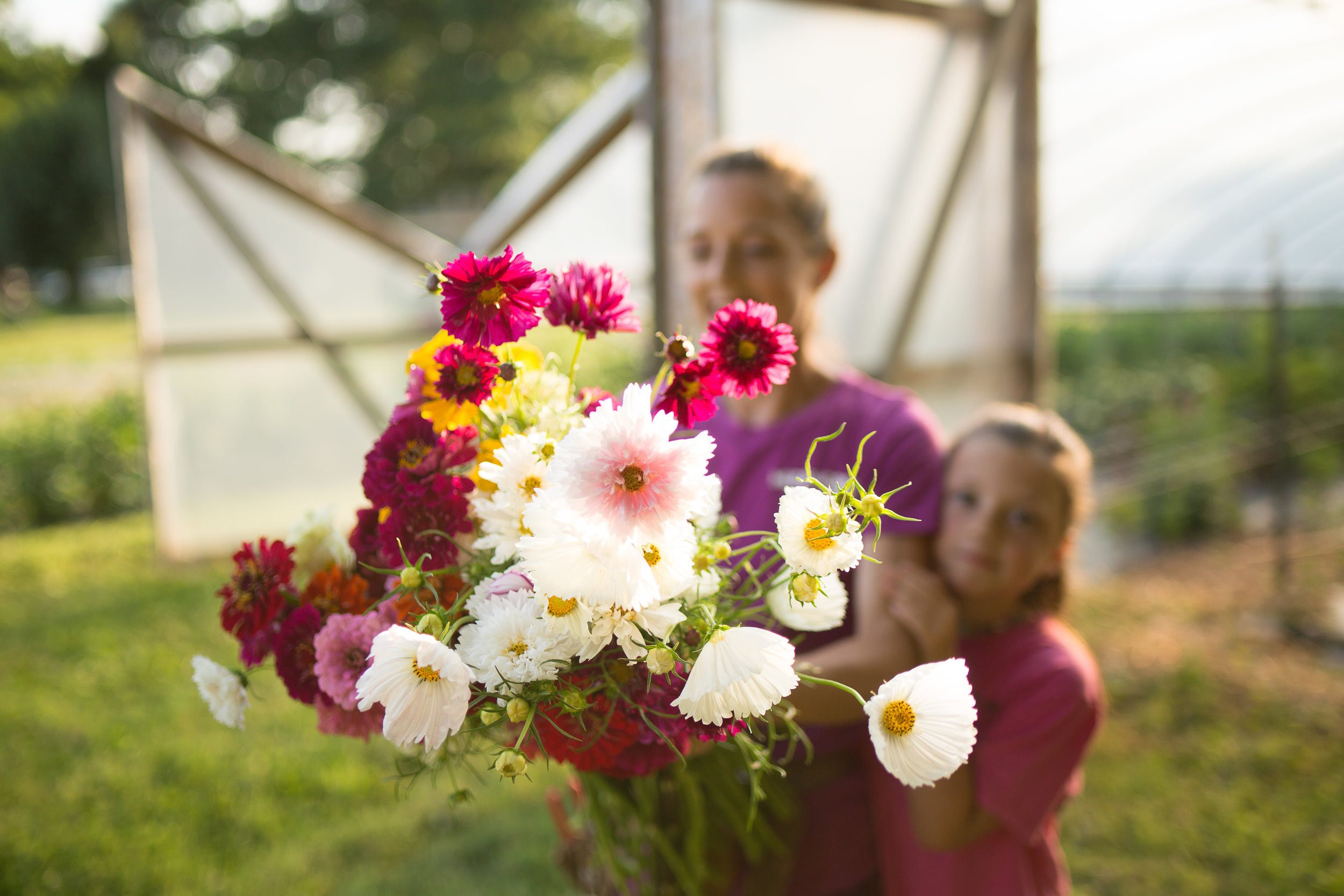 Organic Specialty Cut flowers grown in harford county MD