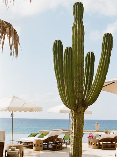 mexico-posting-4.jpg