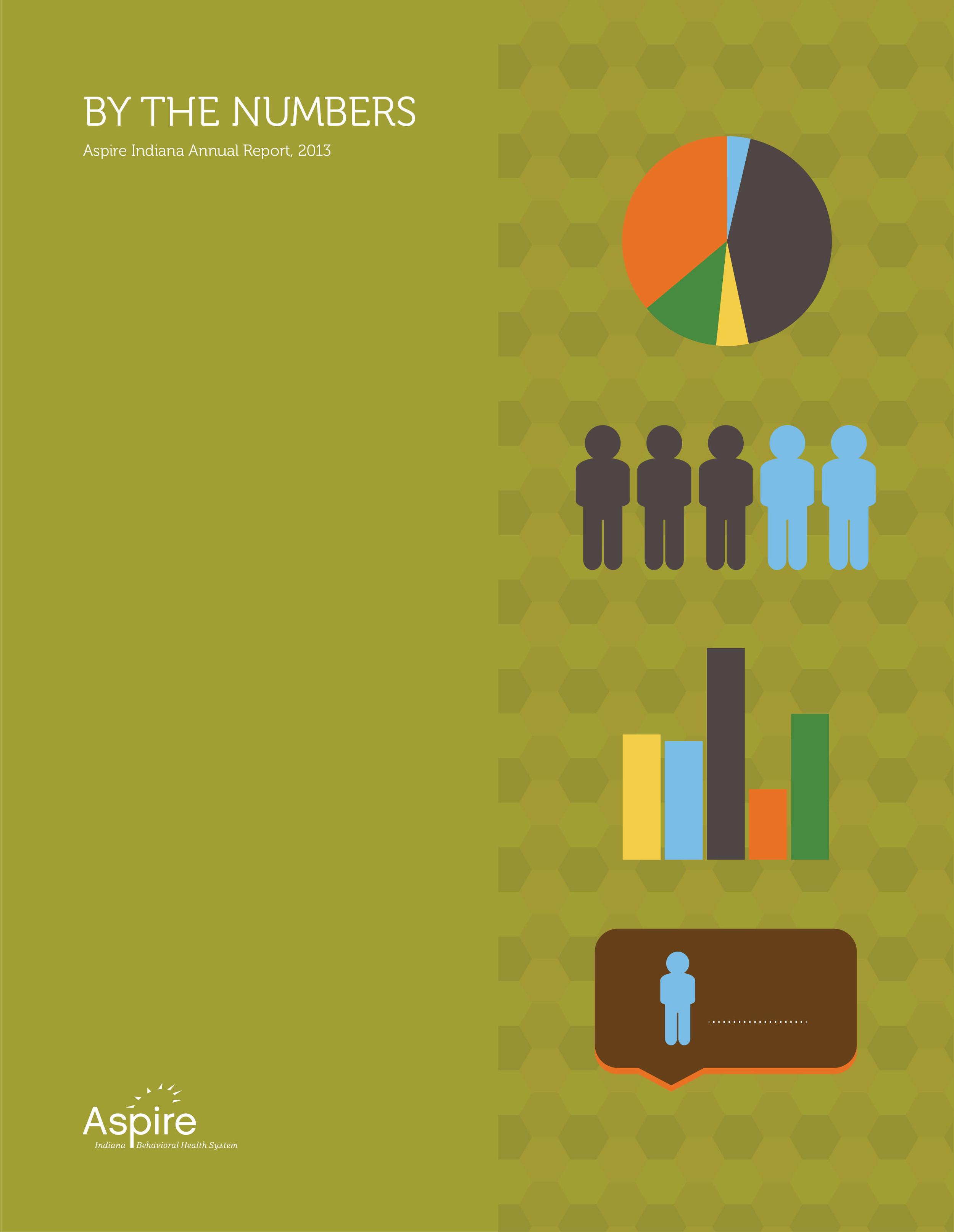 Aspire Indiana Annual Report 2013