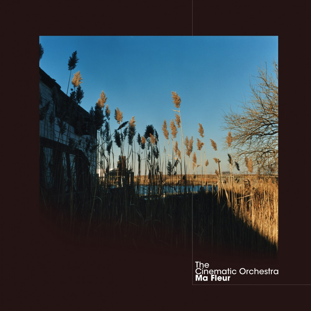 THE CINEMATIC ORCHESTRA | 'Ma Fleur'