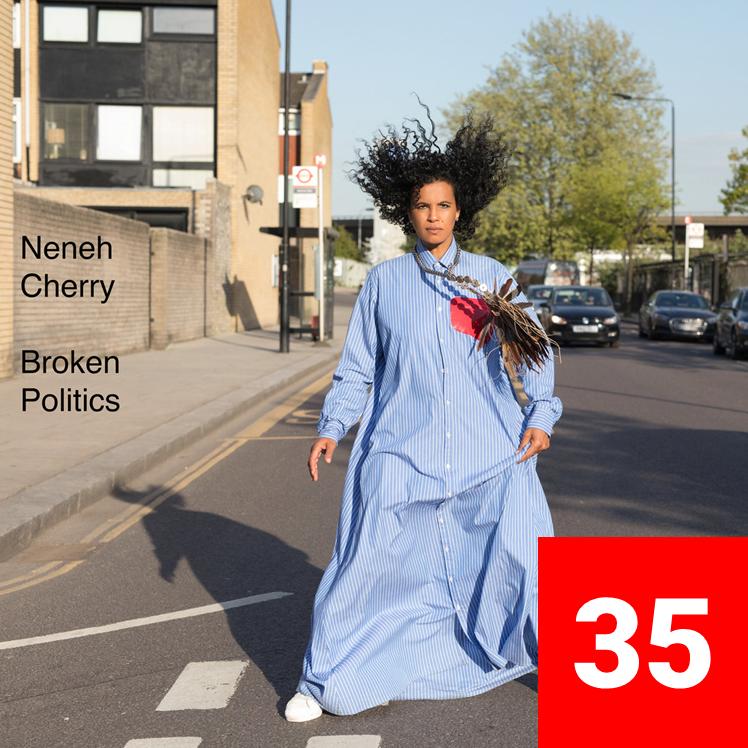 35_NenehCherry_BrokenPolitics.png