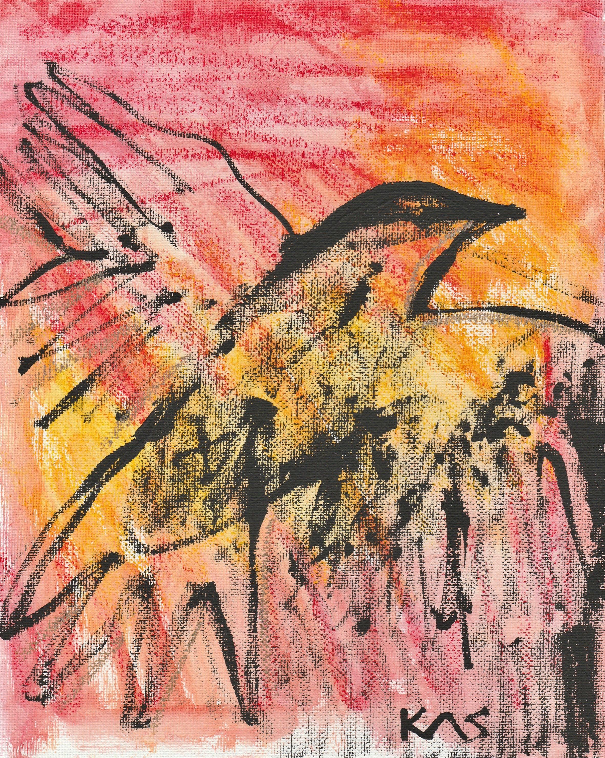 Crow by Kathryn Sturges