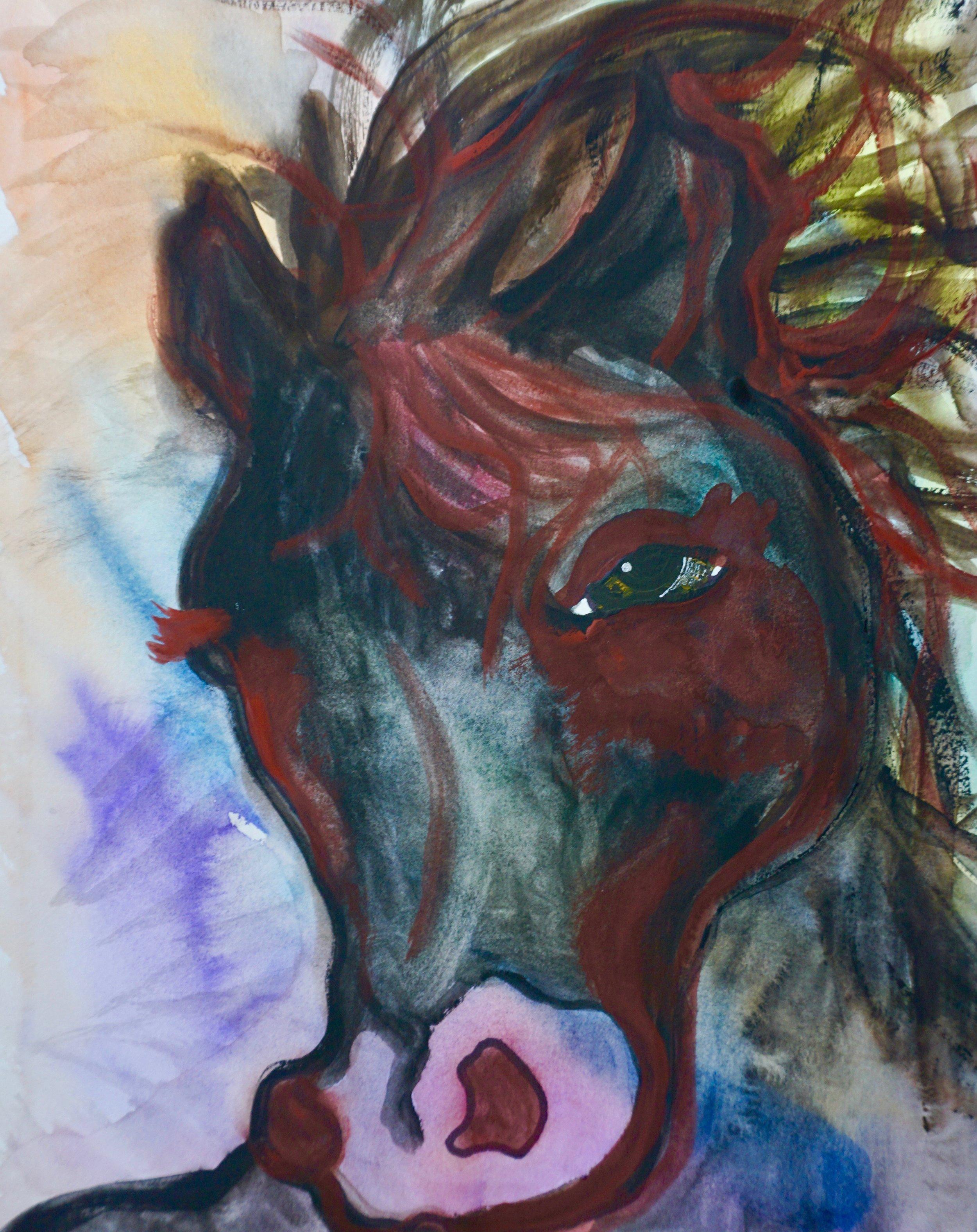 Black Horse by Kathryn Sturges