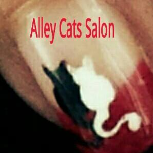 Alley Cats Salon.jpg
