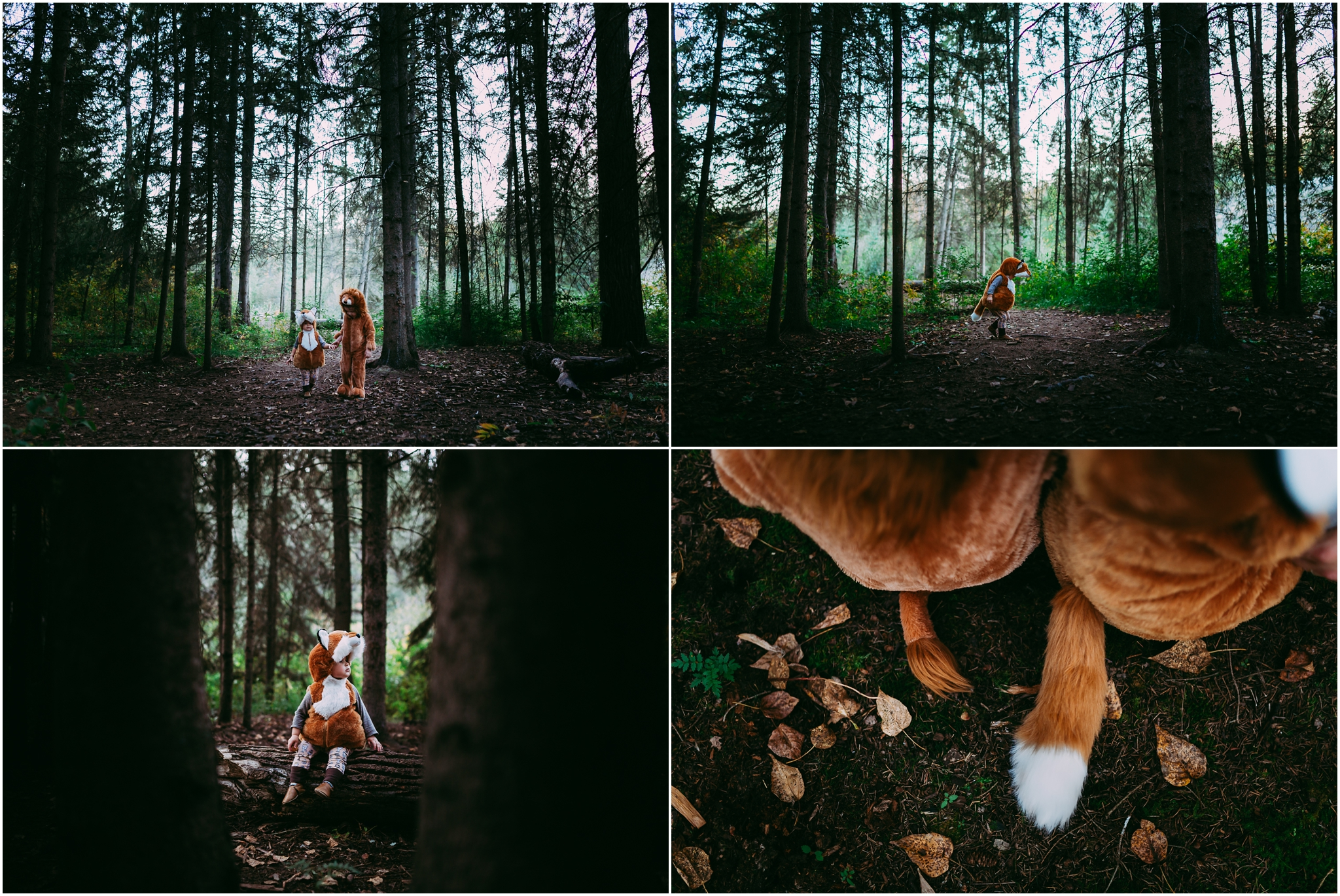 Edmonton Family Lifestyle Photographer - Halloween - Lion - Fox - Costumes - Brothers - YEG - Whitemud Ravine Park
