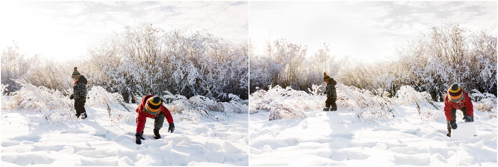 Treelines Photography - Edmonton Lifestyle Photographer - Winter January